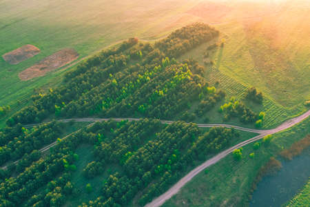 Level fields with a small forest in the last rays of warm sunshine. Spring landscape aerial view. Background
