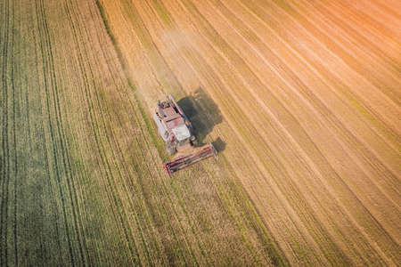 Harvesting wheat harvester on a farm with a view from above on a hot summer day