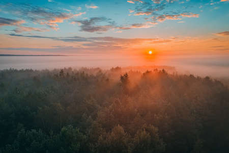 Picturesque sunrise with bright sun over a beautiful forest with fog. Summer atmospheric morning, nature landscape and mystical fog