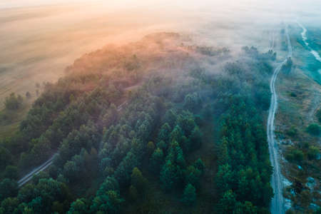 Mystical fog in the morning covering the forest with the road. Landscape of the nature of Belarus from aerial view 免版税图像