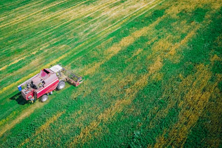Harvester working in the field of cereal cleaning in the farm in the fall. Aerial view