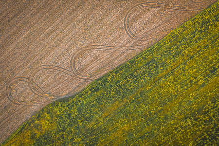 Top view of a field with corn and arable land. Farm field texture 免版税图像