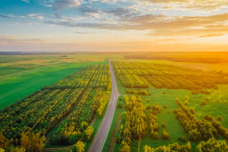 Transit Highway in Belarus, lying among picturesque forests with pine trees and fields at sunset. Aerial view