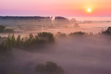 Incredibly beautiful fog at dawn over the village near the forest. Spring morning