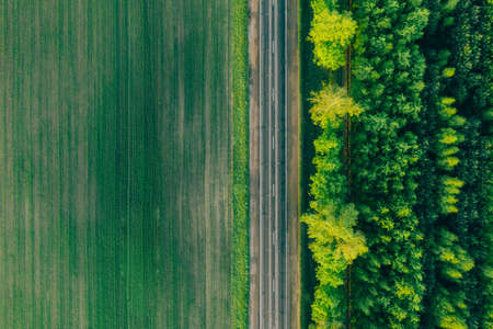 Aerial view - an asphalt highway between the summer field and the forest. Background