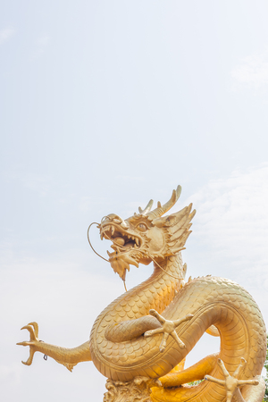 dragon head: Big golden dragon statue in sunny day