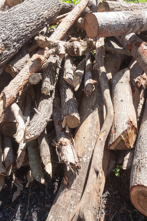 stack of firewood: A small pile of logs in countryside , firewood stack. Stock Photo