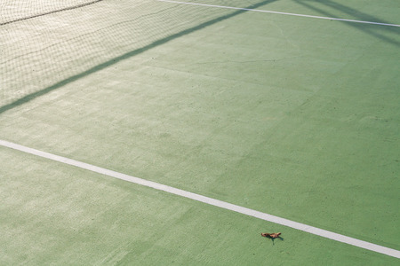 white lines: Dirty paddle tennis  field texture  white lines with old leaf