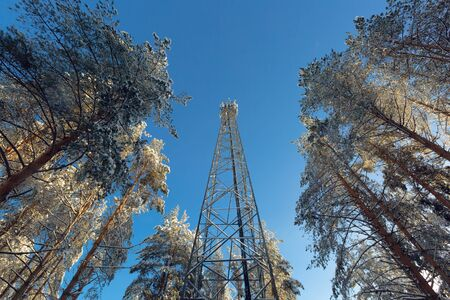 Telecommunication tower or mast with microwave, radio panel antennas, outdoor remote radio units, power cables, coaxial cables, optic fibers are on the top mast that located in forest