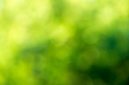 Zelené rozmazané pozadí a slunečnímu záření Reklamní fotografie