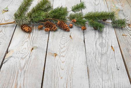 Winter decoration Standard-Bild