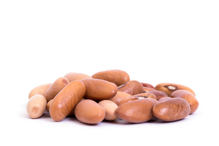 roman beans: cranberry bean on white background