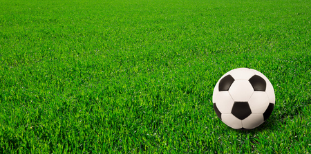ballsport: soccer ball on soccer field