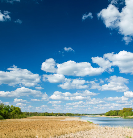 blue cloudy sky: meadow and pond with blue cloudy sky Stock Photo