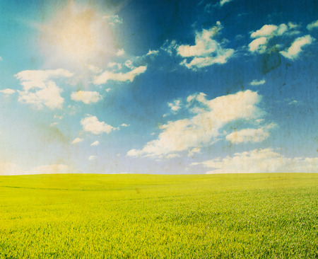 horizontal  green: Green field under blue sky with white clouds