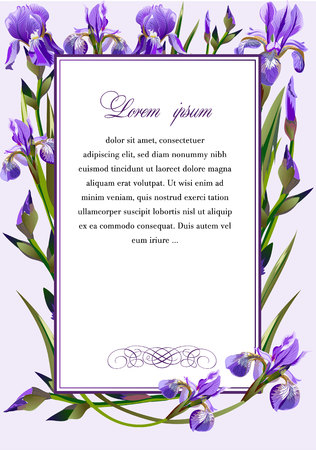 Frame with the flowers of iris vector illustration.