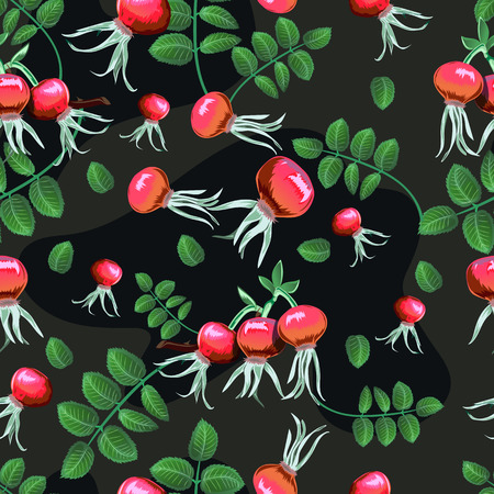 Seamless floral background with rosehips. Hand-drawn vector Illustration