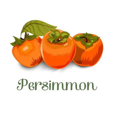 Persimmon for packing, textiles, greeting cards, labels and much more.Isolated image on white background Illustration