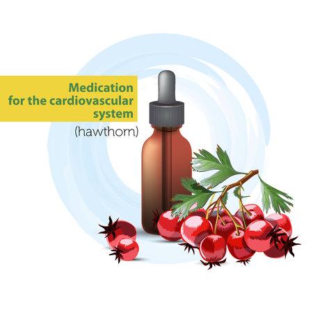 El medicamento para el sistema cardiovascular es la tintura de la imagen aislada de espino.