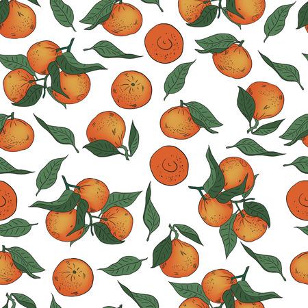 Vector illustration. Hand drawn Mandarins, clementines, citrus. Mandarin seamless pattern. Vector Illustratie