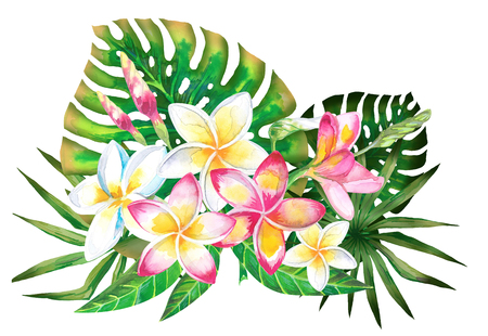 Watercolor summer tropical design for banner or flyer with exotic palm leaves, Plumeria flowers Banco de Imagens