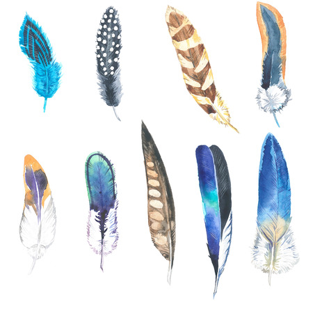 Watercolor illustration. Hand drawn feather set. Boho style. Elements for design. Cloth rug design. Banco de Imagens