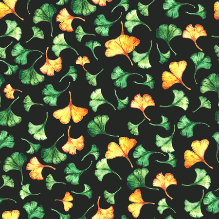 Ginkgo biloba leaves floral watercolor seamless pattern on black backround. Tree plant known as ginko or gingko.