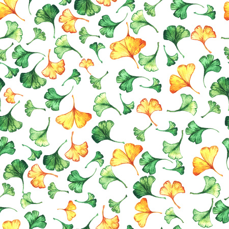 Ginkgo biloba leaves floral watercolor seamless pattern. Tree plant known as ginko or gingko. Ginkgo plant herbal alternative medical care anti-oxidant leaves floral seamless textile