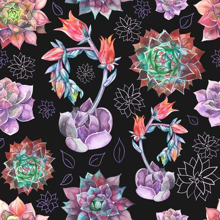 Colorful Seamless pattern with succulents plants.Perfect for your project,wedding,greeting card,packaging,wallpaper,pattern,texture,cover