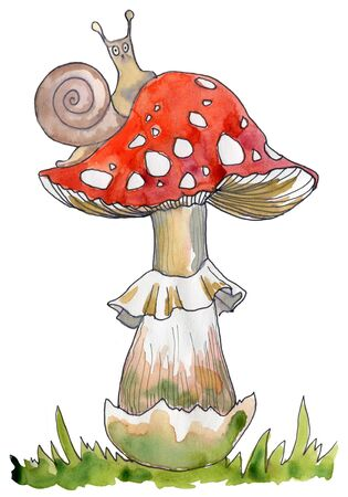 Amanita, poisonous mushroom, hand drawn watercolor illustration