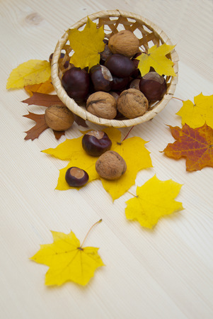 Chestnuts in basket and Autumn leaves on wooden table photo
