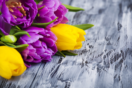 Beautiful purple and yellow tulips on wooden background photo