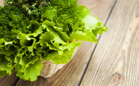 Fresh green lettuce salad with parsley, rosemary in basket on a wooden background