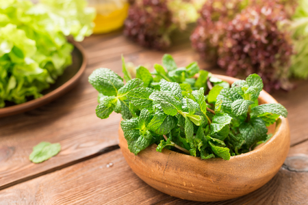 Composition of greens and mint for smoothies Standard-Bild