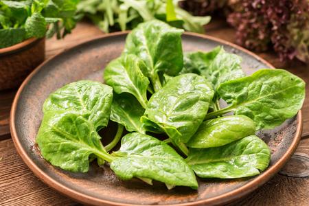 Fresh tasty spinach for healthy vegetarian snack Standard-Bild