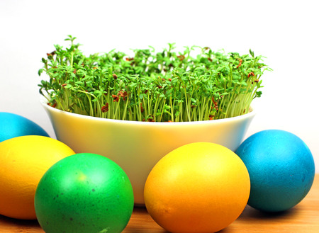 cress: Easter eggs and cress