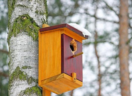 garden features: A small bird house. Bird Feeder
