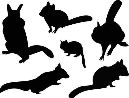 chipmunk: Chipmunk Silhouette Animal Clip Art Illustration