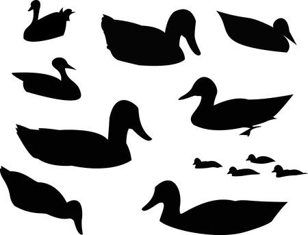 Duck Silhouette Animal Clip Art