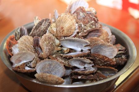 clams: clams