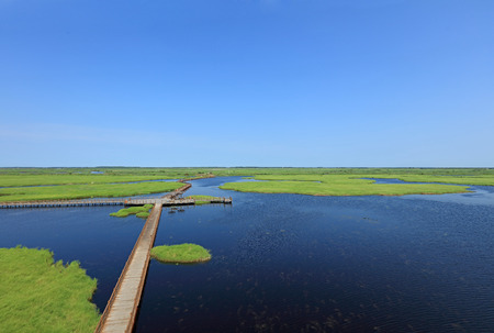 China most beautiful wetlands, wetland birds