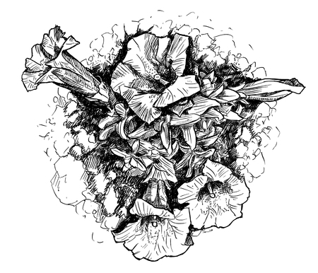 Vector artistic pen and ink hand drawing of blooming gentian flowers in rockery or rock garden. Illustration