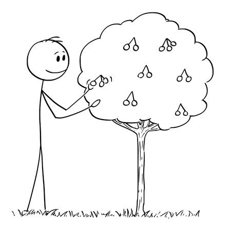 Bâton de bande dessinée dessinant une illustration conceptuelle de l'homme cueillant des fruits dans une petite cerise ou un griotte ou un cerisier aigre.