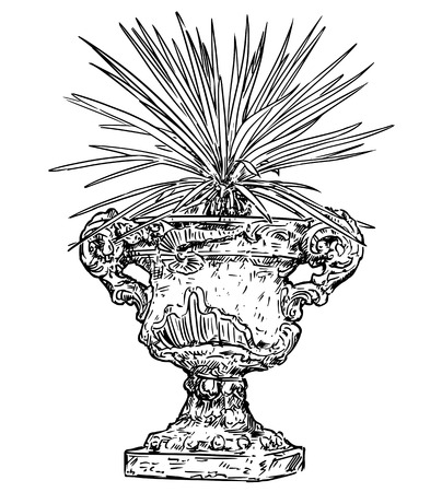 Vector drawing of old ornamental antique garden goblet or vase made from stone with yucca plant.
