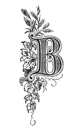 Vintage antique line drawing or engraving of decorative capital letter B with floral ornament or embellishment around. From Biblische Geschichte des alten und neuen Testaments, Germany 1859. Illustration