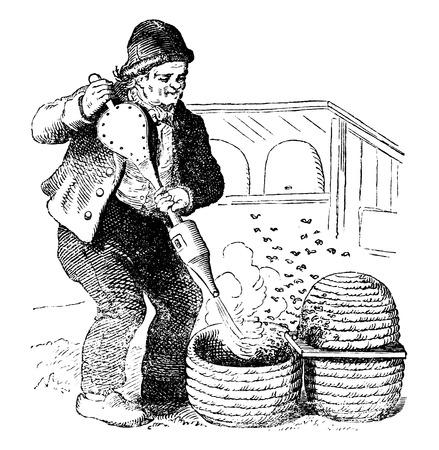 Dessin vectoriel antique ou gravure d'une illustration vintage grunge d'apiculteur travaillant avec une ruche et un fumeur de style ancien. Du livre Illustrierter Neuester Bienenfreund, imprimé à Leipzig, Allemagne 1852.