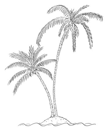 Vector cartoon illustration or drawing of two palm trees growing on small island in center of ocean. Stock Illustratie