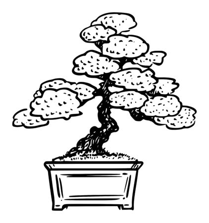 Vector cartoon drawing conceptual illustration of pine bonsai tree. Stock Illustratie