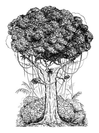 Vector carton digital pen and ink illustration of generic tree and bushes from rain forest.