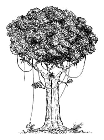 Vector carton digital pen and ink illustration of tree from rain forest.